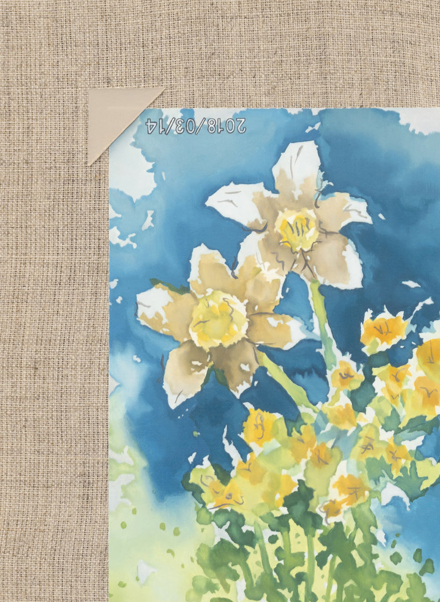 Watercolor of Daffodils